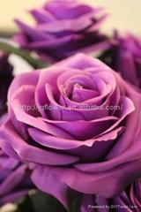 10頭束大玫瑰