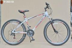 "26""X1.95 Steel frame 18 speed phoenix mtb bike"
