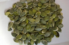 2012 Low-price Organic  Pumpkin Seeds Grown Without Shell