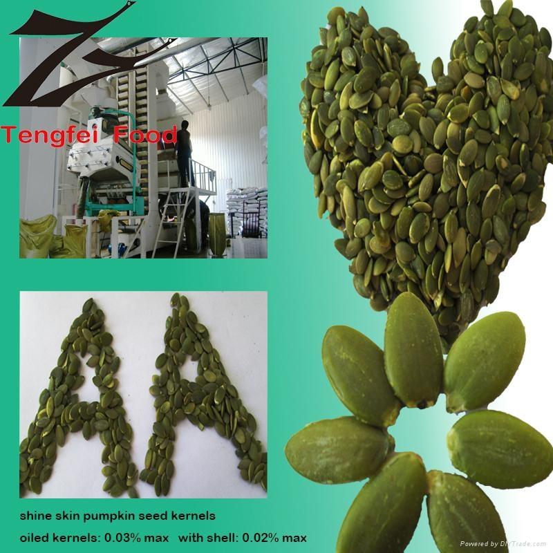 Low-price Organic Shine-skin Pumpkin Seeds  2