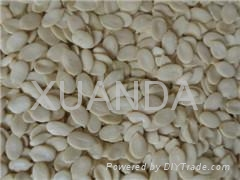 Low-price Watermelon Seed Kernels 1