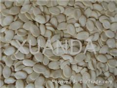 Low-price Watermelon Seed Kernels