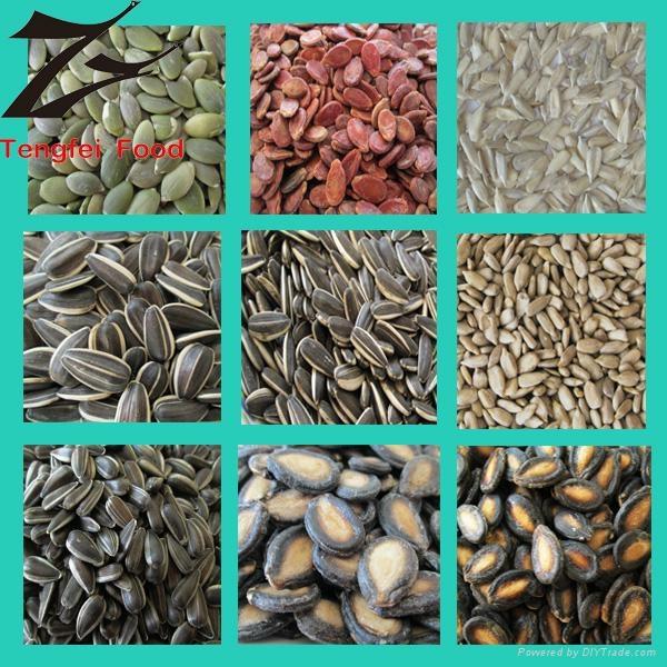 Low-price Watermelon Seed Kernels 4