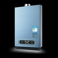 Flue Type Instant Gas Water Heater 6L--12L
