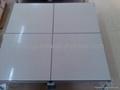 全鋼陶瓷防靜電地板 4