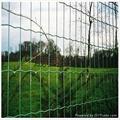 绿地防护隔离用荷兰网