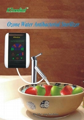 Water ozonator/water ozone/water treatment system
