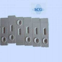 Rapid HCG Cassette Test
