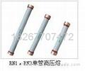 高壓熔斷器 4