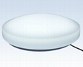 LED Ceiling mounted light 14w/18w