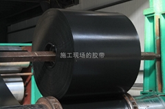 PVCPVG800S煤矿阻燃输送带