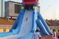 支架游泳池海豚滑梯 2