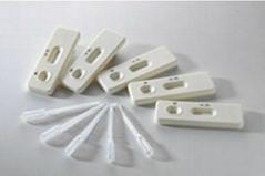 水产品中呋喃唑酮代谢物金标快速检测卡