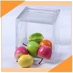 Classic Simple Square Glass Vase