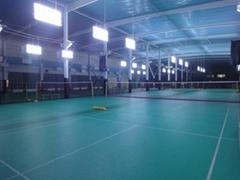 Silicon PU Badminton Court Materials