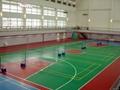 Silicon PU Badminton Court Materials 2