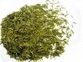 駒龍園·銀針茶