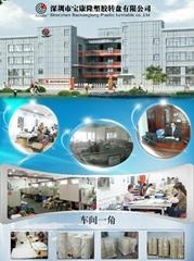 深圳市寶康隆塑膠轉盤有限公司