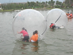 AOTE Inflatable water ball