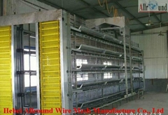battery cages for layers