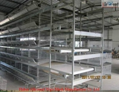 automatic poultry layers cages systems