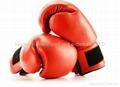 boxing glove 1