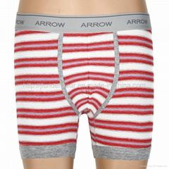 Hot Boxer Shorts