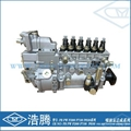 Fuel injection pump assembly PB PW P2000 P7100 P8500