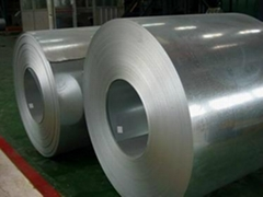 supply galvanized steel coil of high quality