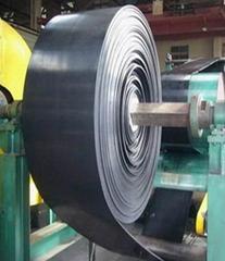 solid woven conveyor belt