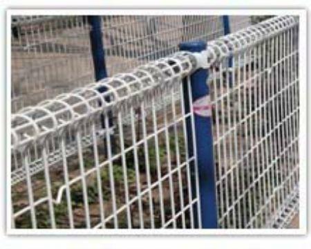 福建双圈护栏网 1