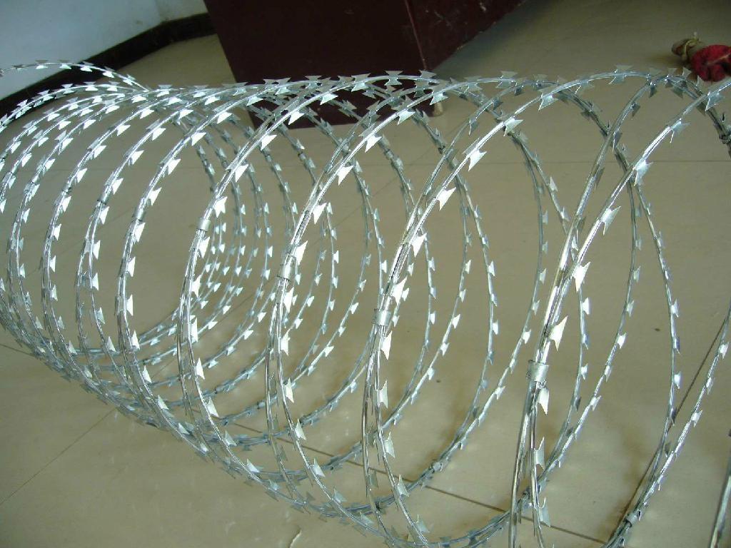 刀片刺绳护栏 1