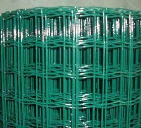 养殖山鸡围网 1