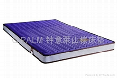 Protect children's series 2 mountain palm mattress