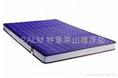 Protect children's series 2 mountain palm mattress
