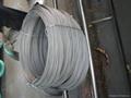 焊条芯线 4