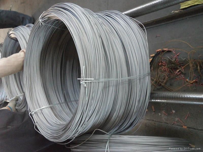 焊条芯线 5