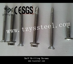 Galvanized Self Drilling Screw