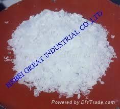 Polyethylene Terephthalate (PET) 4