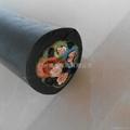 橡膠電纜YC3*35 1*16