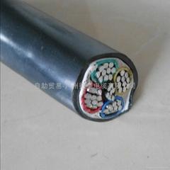 鋁芯電纜線ZR-YJ   4*50 1*25