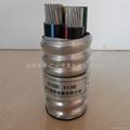 鋁合金電纜ZA-AC90 4*240 3