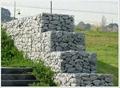 石笼网箱 2