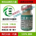 仔猪防病用的微生物em菌保健液如何购买 2