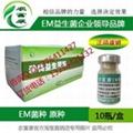 仔猪防病用的微生物em菌保健液如何购买 3