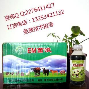 仔猪防病用的微生物em菌保健液如何购买 4
