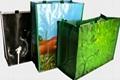 时尚环保袋购物袋 3