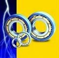 SKF insulated bearings, 6317M/C3VL0241- - 6336M/C3VL0241