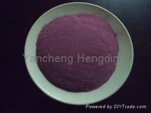 Dehydrated beet root cut  2