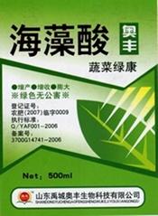 奥丰海藻酸
